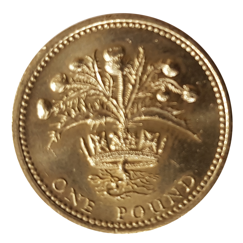 1984 elizabeth one pound coin